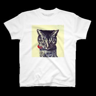 こばぶ〜/KOBABOOのおでんさん T-shirts
