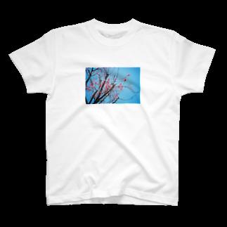 cozcozの梅 T-shirts