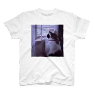 ぐみさん T-shirts
