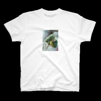 __aiceriseのわにのすけ T-shirts