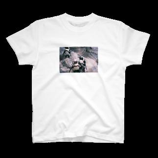ekka_921の水族館のペンギン T-shirts