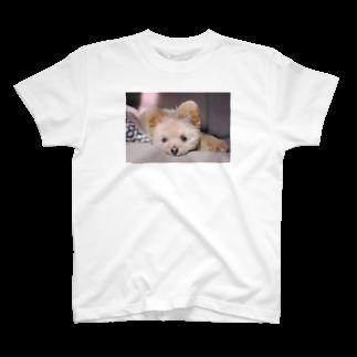 hiramechanのひらめちゃんおネム T-shirts
