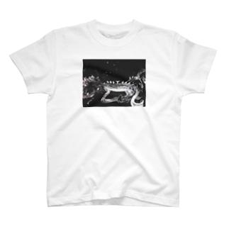 モノトーン T-shirts