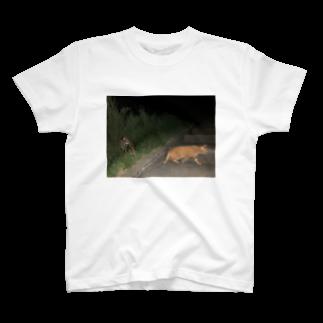 どうぶつだいすきの夏、夜、猫、2匹と二人 T-shirts