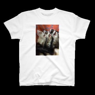 あゆさんの3ニョロ パート2 T-shirts
