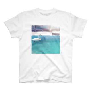水鳥の夢うつつ T-shirts