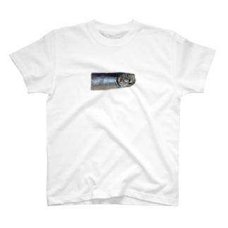 イワシ T-shirts
