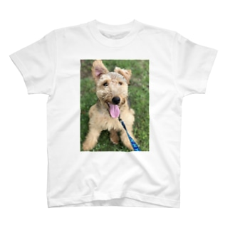 ウェルシュテリア の日常 T-shirts
