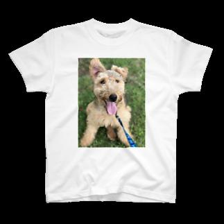AByouのウェルシュテリア の日常 T-shirts