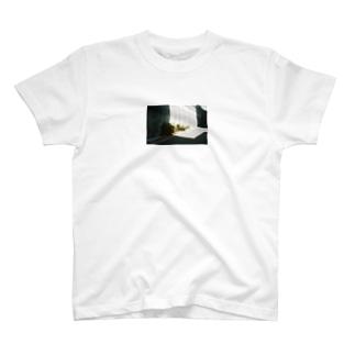 Shogo Hirokiのgreen T-shirts