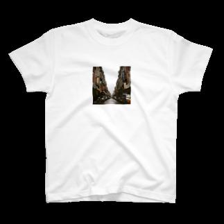 Shogo Hirokiの台湾 T-shirts