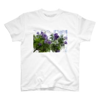 ジャカランダ T-shirts