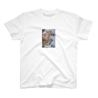 yanagiの花 T-shirts