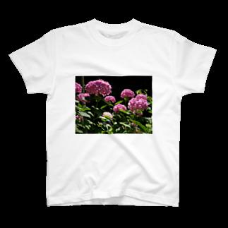 影のある写真とチワワの赤い紫陽花 T-shirts