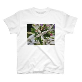 幸福な知らせ・・・ T-shirts