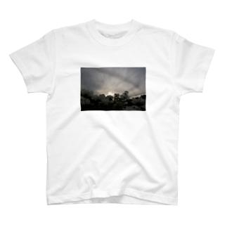 日暮れと秋桜 T-shirts