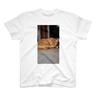 日向ぼっこ T-shirts