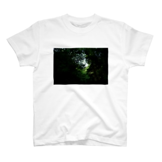 深森 T-shirts