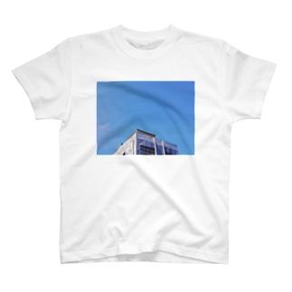 スカイブルー T-shirts