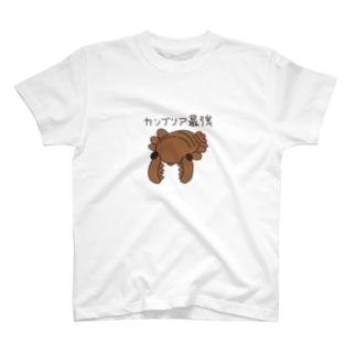 カンブリア最強生物 アノマロカリス T-shirts