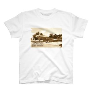 日本の城:甲府城(舞鶴城) Japanese castle: Kofu castle ( Maizuru castle)  T-shirts
