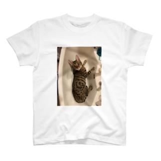 ベンガル猫 T-shirts