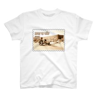 インド:アーグラ城砦★白地の製品だけご利用ください!! India: Agra Fort★Recommend for white base products only !! T-shirts