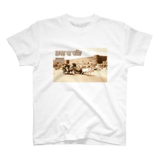インド:アーグラ城砦 India: Agra Fort T-shirts
