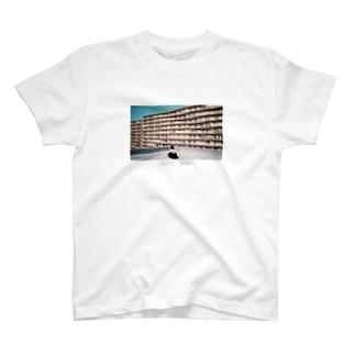 水色 T-shirts