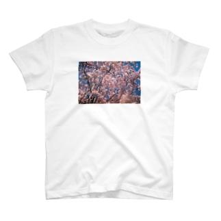さくらん T-shirts