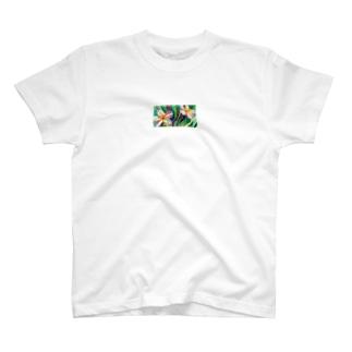 Plumeria T-shirts
