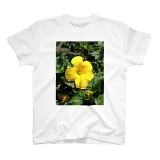 沖縄黄色いハイビスカス♪ T-shirts