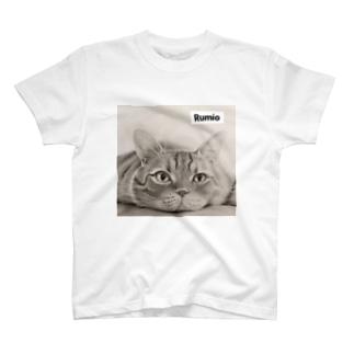 Kantaro T-shirts