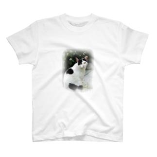 ぶち猫「さつき」全身 T-shirts