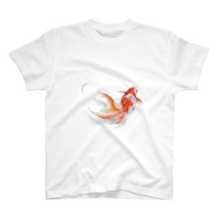 りゅうきん まる T-shirts