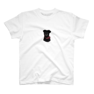 ONE T-shirts
