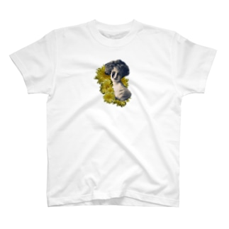 CHRYSANTHEMUM T-shirts