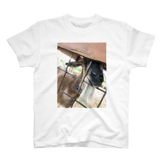 ヤギヤギ T-shirts