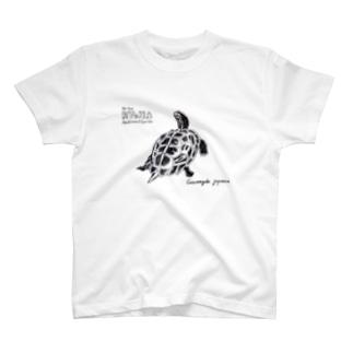 日本の爬虫類 リュウキュウヤマガメ T-shirts