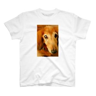 ラブリーわんた T-shirts