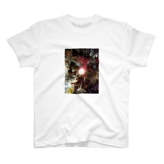 真下からのお花畑 T-shirts