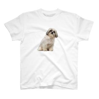 しずかわさん T-shirts