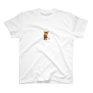濡れてしょんぼりペシャンコもふもふねこちゃん T-shirts