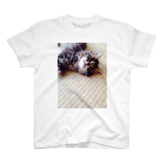 子猫のミントちゃん♡ T-shirts