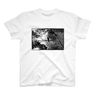 白黒カラス T-shirts