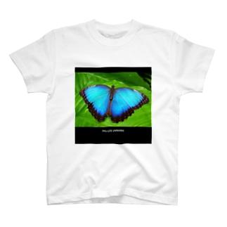モルフォ蝶 T-shirts