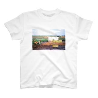 モロッコ:農村風景 Morocco: Country side T-shirts