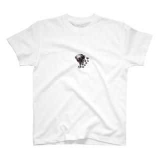 なぁなぁインコ(三重弁) T-shirts