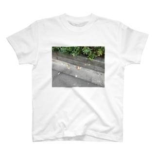 乳酸菌のTシャツ T-shirts