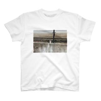 パフェのTシャツ T-shirts